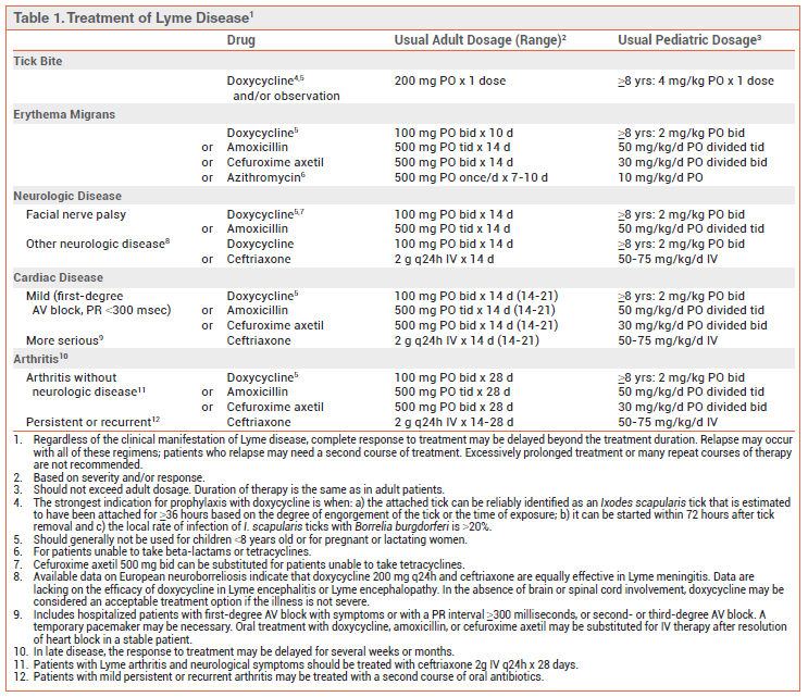 Amoxicillin Dosage For Pediatric Lyme Disease